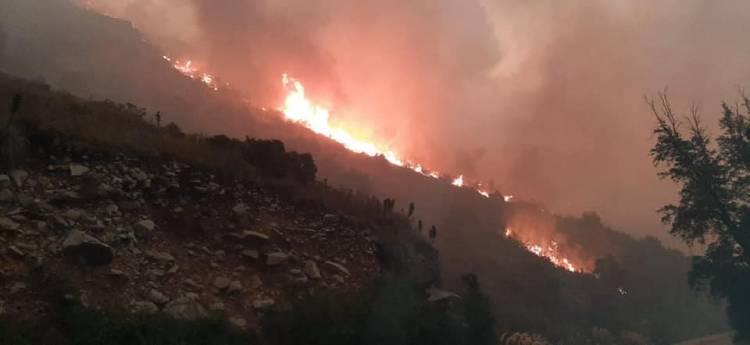 """Graves daños deja incendio forestal en """"Quebrada Medina"""" de sector """"El Melado"""""""