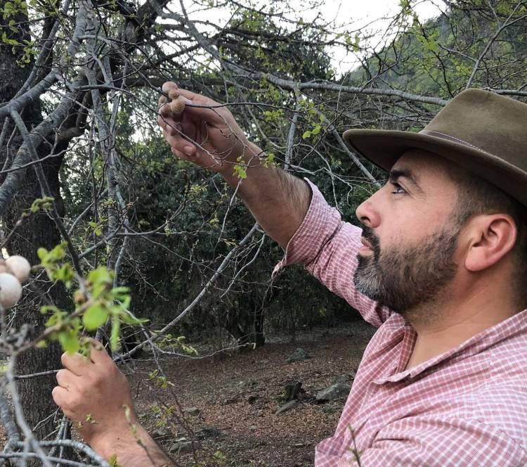 TRICEL rechaza apelación de concejal Eduardo Ibáñez y el ambientalista no podrá ir  a la reelección por un puesto en el Concejo Municipal